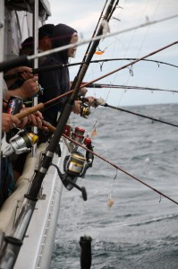 Things can become a little hectic at times when bottom fishing aboard a crowded charter boat! Tangles happen.