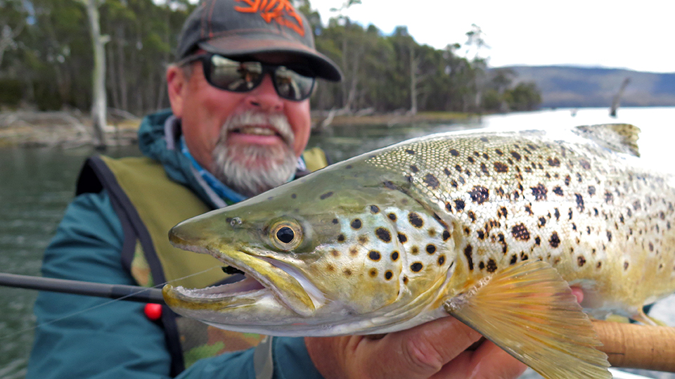 A lovely fly-caught Woods Lake brown trout taken from the hire rig.