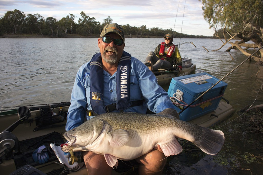 My first metre-plus Murray cod helped to radically shift my attitude about fishing from kayaks!