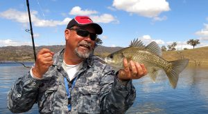A Glenbawn bass from the second round of The Australian Freshwater Masters.
