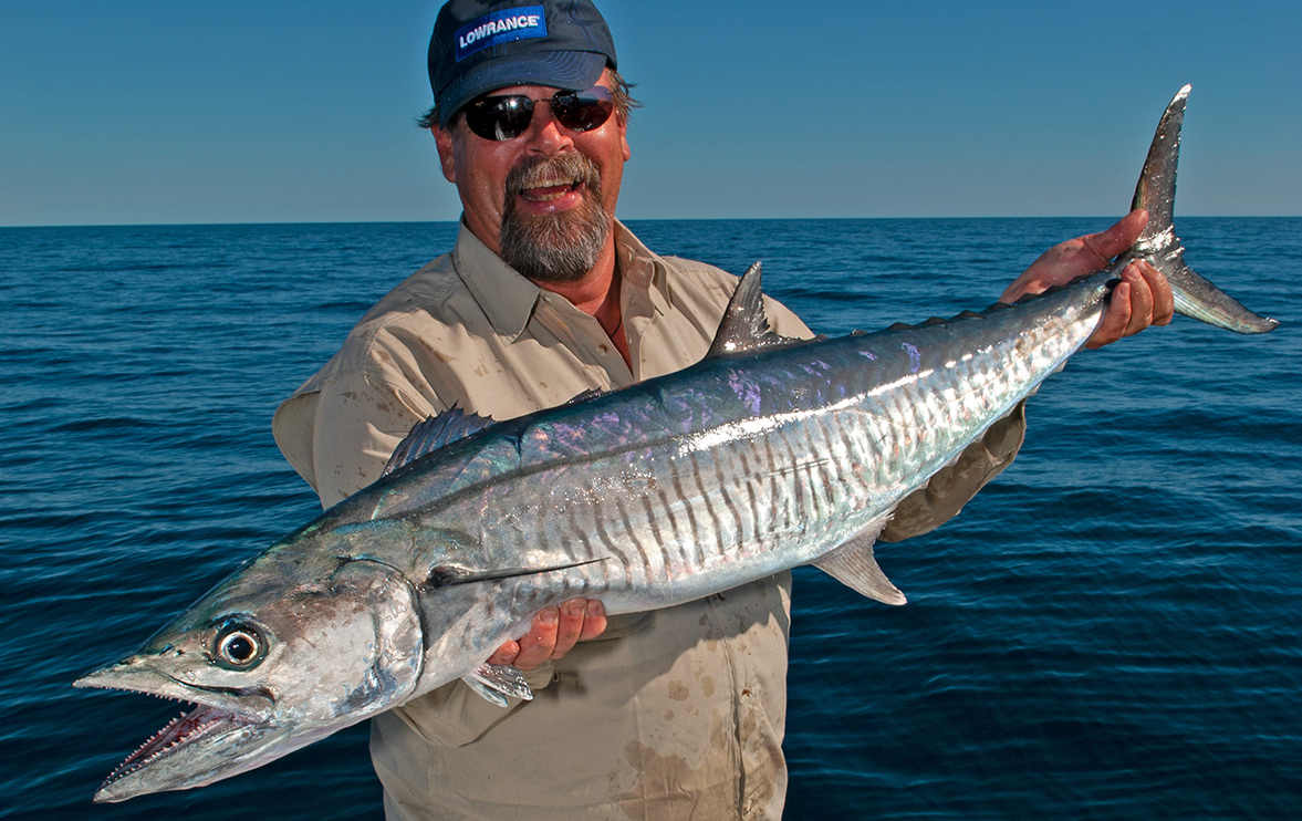 It seems likely that Spanish mackerel stocks have been in decline for a century.