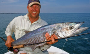 Spanish mackerel are a superb sport and table fish.